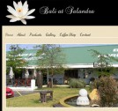 CMS website designed for Bali Salandra - http://www.balisalandra.co.za